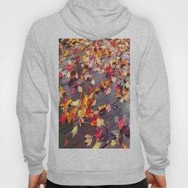 Fallen Colors Hoody