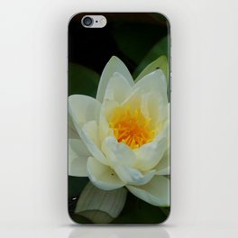 Lovely Lily iPhone Skin