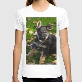 Little German Shepherd puppy T-shirt