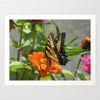 Mary Ann's Butterfly Art Print