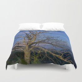 Centenary Chestnut at blue hour Duvet Cover