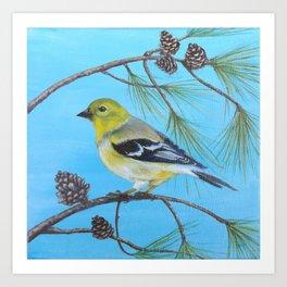 Golden Finch Art Print