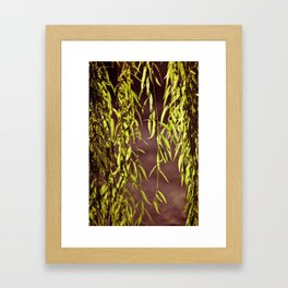 Light & Leaves Framed Art Print