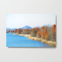 Two Rivers Park Bridge Metal Print