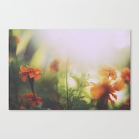 Marigolds in Ubud Canvas Print