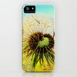 Dandelion 5 iPhone Case