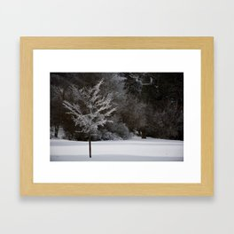 Winter Magic Framed Art Print