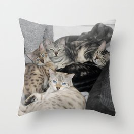 Bengal Cat Kitty Pile  Throw Pillow