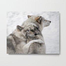 Wolves in Snow Metal Print