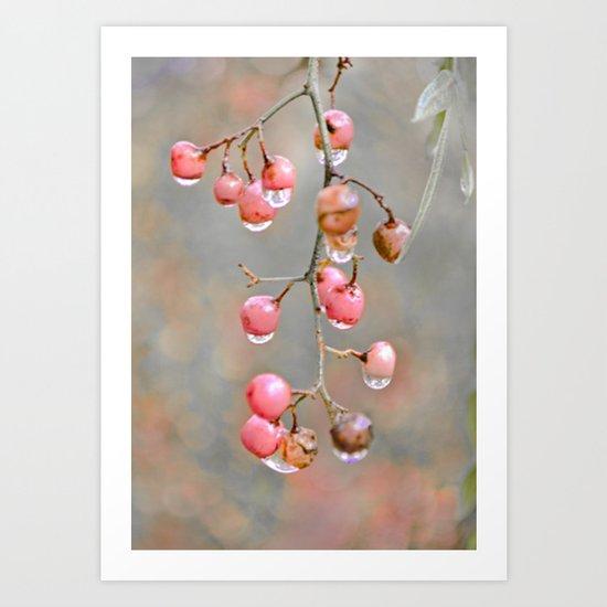 Berries and Raindrops Art Print