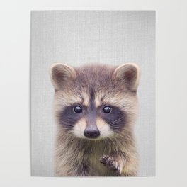 Raccoon - Colorful Poster