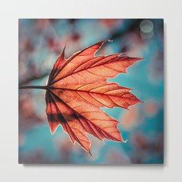 Leaf of Light Metal Print