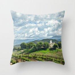 Vineyards, Temecula, CA Throw Pillow