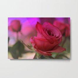 Dreaming of Roses Metal Print