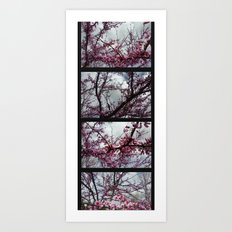 Under the trees: early spring Art Print