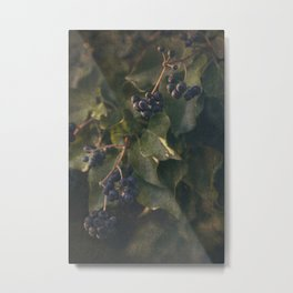 Berries Metal Print