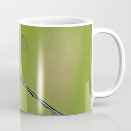 Damselfly (Lestes dryas - male) Coffee Mug
