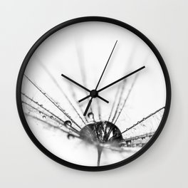 Abstract Beauty a wet Dandelion Seed Wall Clock