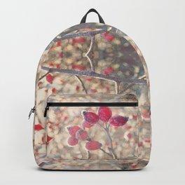 December morning Backpack