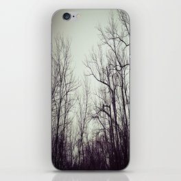 Tree branches in the sky iPhone Skin