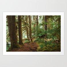 Mossy Wood Landscape Art Print