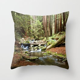 Crystal Stream Throw Pillow