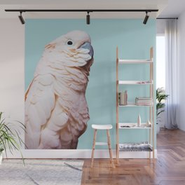 Parrot Photography | Pink Bird |  Tropical | Exotic | Turquoise Art | Blush Pink Wall Mural