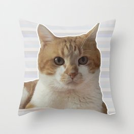 Red cat on a striped background. Throw Pillow