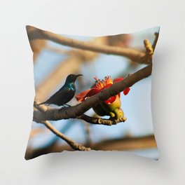 SunBird on a Bombax Ceiba, also known as red silk cotton or red cotton tree. Throw Pillow