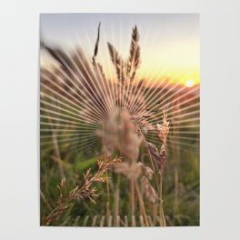 Peel sunset lll - sunset graphic Poster