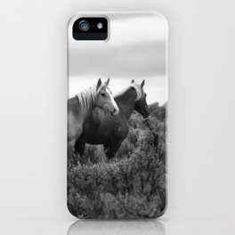 Palomino Buttes Herd - Wild Horses BW iPhone Case