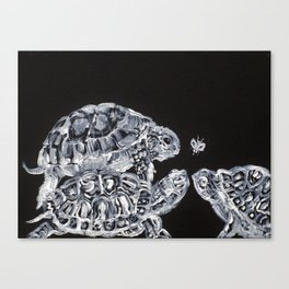 THREE  TERRAPINS AND ONE FLY Canvas Print