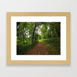 Crab Tree Falls Trail - NC Framed Art Print