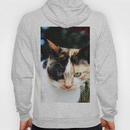 Sweet Cat Portrait Hoody