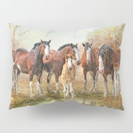 Yesterdays Reflection Pillow Sham