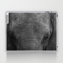 Elephant head - Africa wildlife Laptop & iPad Skin