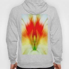 Rorschach & The Fire Goddess Hoody
