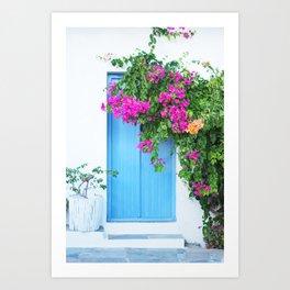 249. Flowers Door, Greece Art Print