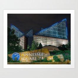 Chattanooga Aquarium for CFC Art Print