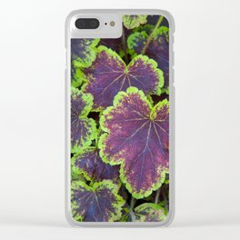 Heucherella 'Solar Eclipse' Clear iPhone Case