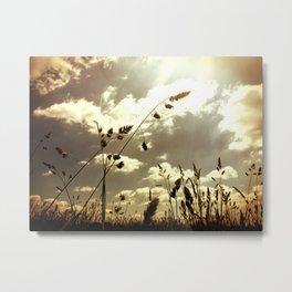 GRASS AND LIGHT Metal Print