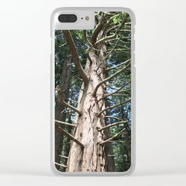 Looking upwards at tree Clear iPhone Case