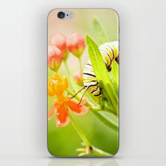 Worlds Unseen iPhone & iPod Skin