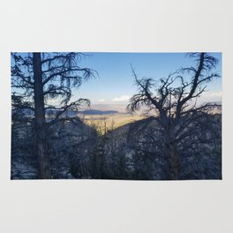 Ancient Bristlecone Pine Forest #1 Rug