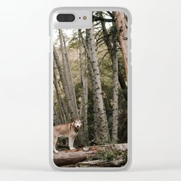 Husky in Forest Clear iPhone Case