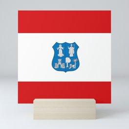 flag of Asuncion,Paraguay Mini Art Print