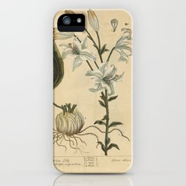 """White Lilly by Elizabeth Blackwell from """"A Curious Herbal,"""" 1737 iPhone Case"""