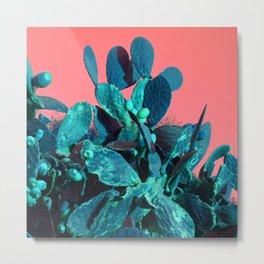 Cactus Fruit Metal Print