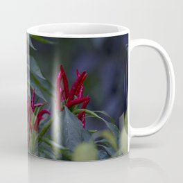 Red chili peppers in the plant Coffee Mug