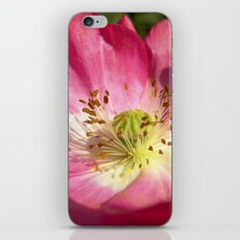 pink bloom focus IX iPhone Skin